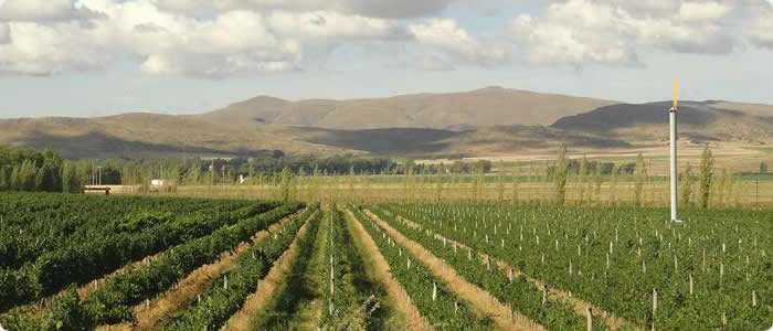 Catamarca and La Rioja - Catamarca and La Rioja Wine Tour - 6 Days