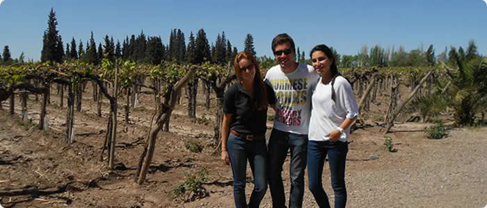 Unforgettable Mendoza - Mendoza Wine Tour - 4 days