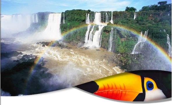 Iguazu Falls Wildlife Tours